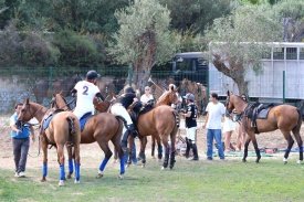 Changing horses @CelinaLafuenteDeLavotha2014