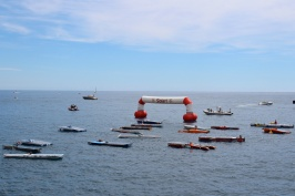 The solar powered boats ready for the Fleet races on Friday, July 11, 2014 @CelinaLafuenteDeLavotha