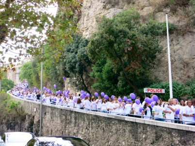The purple march coming down the ramp of the Palace @CelinaLafuenteDeLavotha