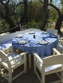 Our table under the trees @CelinaLafuenteDeLavotha