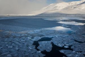 Svalbard, Norway @Brutus Ostling WWF