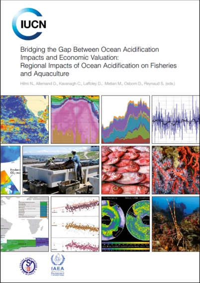 Cover page of Bridging the Gap between Ocean Acidification Impact and Economic Valuation CSM
