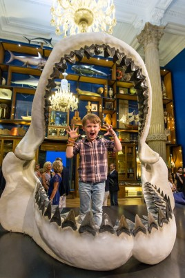 A young visitor inside the Jaw of the Megalodon @ MOM