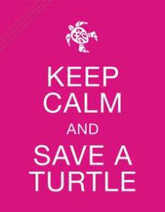 Keep calm and save a turtle