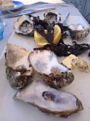 Fresh oysters @CelinaLafuenteDeLavotha