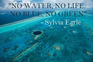 No water, no life. No blue, no green by Sylvia Earle