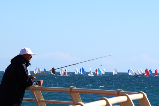 Fishing with the regattas in the background @CelinaLafuenteDeLavotha