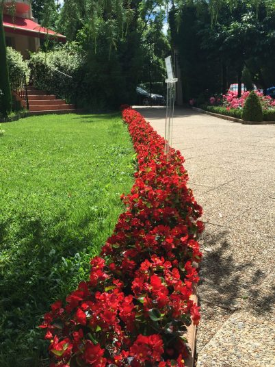 A row of red flowers lining hte pathway at Villa Gallici@CelinaLafuenteDeLavotha