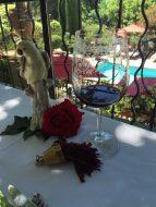 Enjoying a glass of good wine at Villa Gallici@CelinaLafuenteDeLavotha