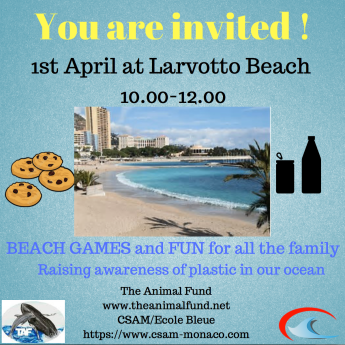 TAF Plastic Pollution Awareness invitation