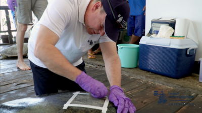 Prince Albert placing an Argos tracking tag to a marine turtle at Rangers station Philippines 2016 @Copyright Oceanographi Institute