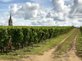 The church among the vignobles @CelinaLafuentedeLavotha