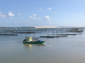 The oysters traps in the bay with the Dune de Pilat in the background @CelinaLafuentedeLavotha