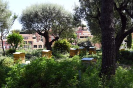 Apiary in Fontvieille @Manuel Vitali, Direction Communication