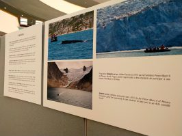 Photo exhibition Monaco and the Ocean at the UN @DR