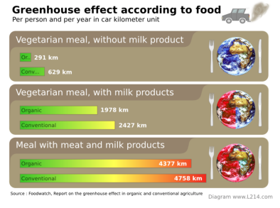 Greenhouse effect according to foor