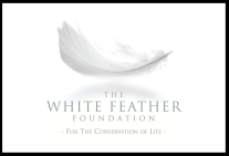The White Feather Foundation Logo, For the Conservation of Life