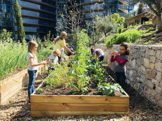 Jessica Sbaraglia and children working on the potager adjacent to the Odeon Tower @TDM