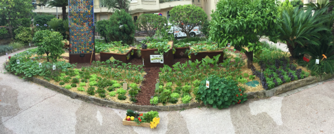 Vegetable garden at the Fondation Prince Albert II de Monaco @TDM