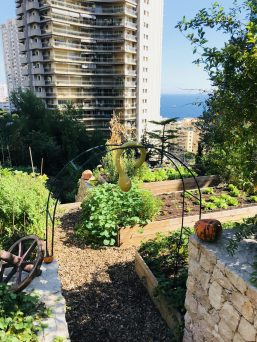 View of the vegetable garden at the foot of the Odeon Tower @TDM