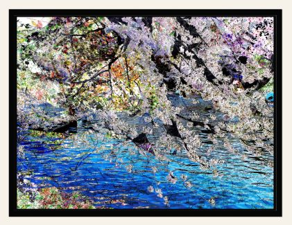 6. Sakura 5_72, 2012, Promoting transformation, let go of regret, fear, enhance peace and tranquility